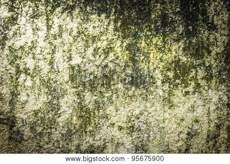 Grunge Green Stains Moss Wall Background Texture With Light Frome Corner