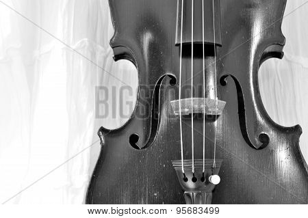 Antique Violin Black And White Background