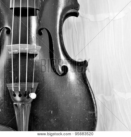 Antique Violin Square Image, Monochrome