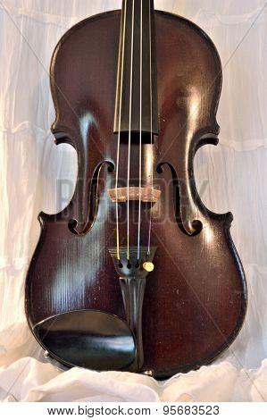 Antique Violin Against White, Vertical