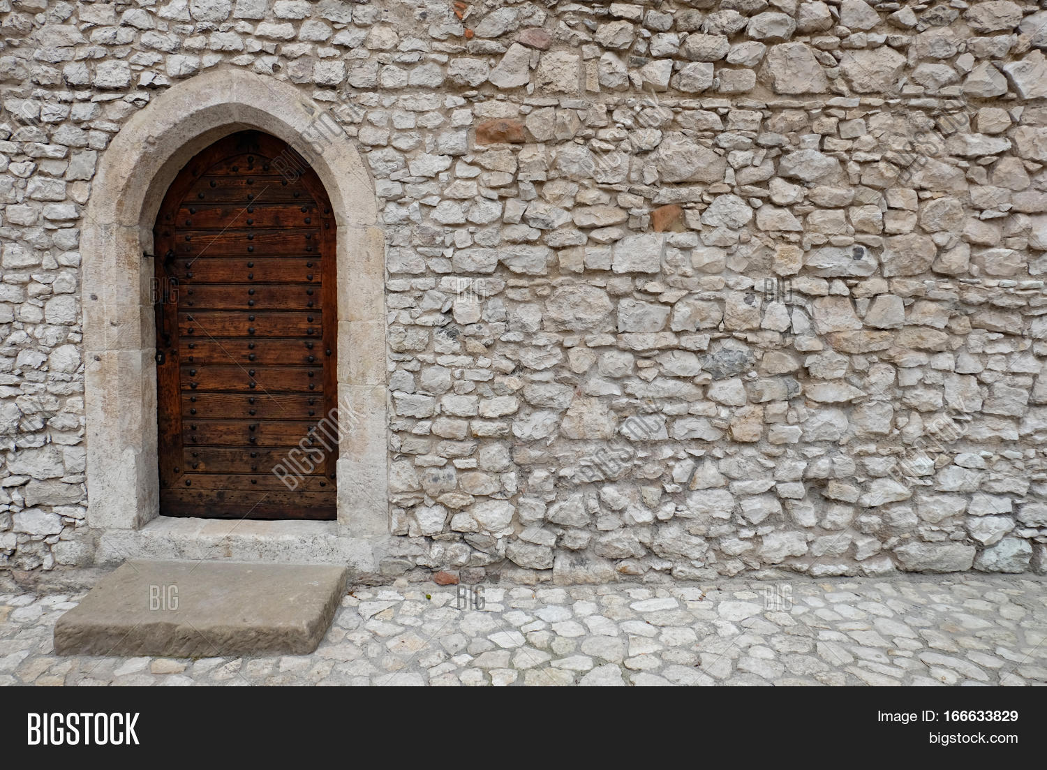 Wooden Backdoor With Pointed Arch Gothic The Door Is Located In A Wall