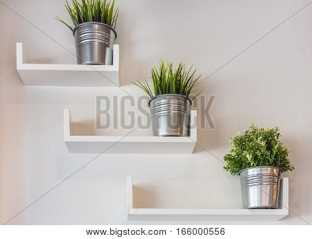 Silver potted plants on modern white wall