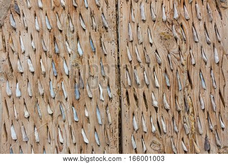 Wooden panels are inserted into the jagged rocks.