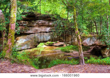 Mountain forest and natural stone bridge. Red River Gorge in Kentucky USA