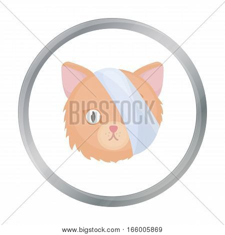 Sick cat with bandage on a head icon in cartoon design isolated on white background. Veterinary clinic symbol stock vector illustration.
