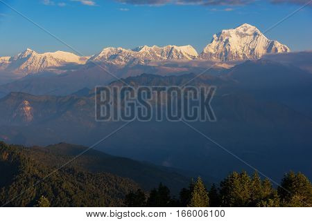 View of Mt. Dhaulagiri (8,172m.) at Sunrise from Poon Hill, Nepal
