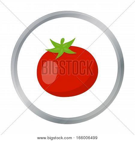Tomato icon cartoon. Singe vegetables icon from the eco food cartoon.