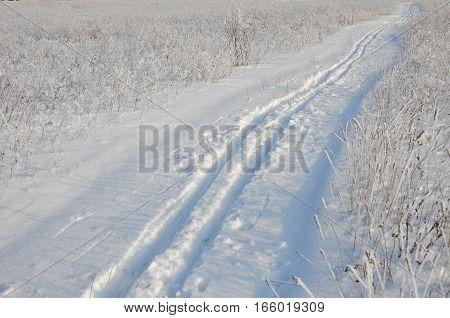 Ski track in Snow Covered Field Ski track in Snow Covered Road.