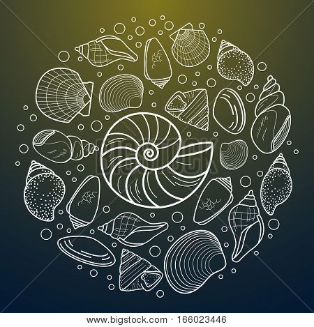 Vector sea shell composition. flat style set of conchs and shellfish for prints, advertisement, poster, banner phone case .dark green background
