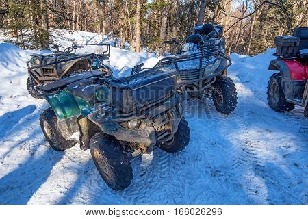 Rent of quadracycles in winter forest for riding on snow track