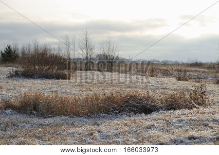 Landscape. Late autumn on the field covered with rime.