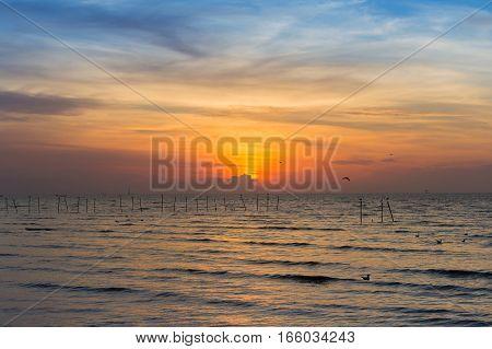 Beautiful sunset over coastline natural landscape background
