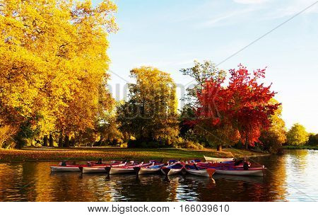 The Daumesnil lake is the largest lake in bois de Vincennes Paris France and popular destination for walks and rowboat excursions.