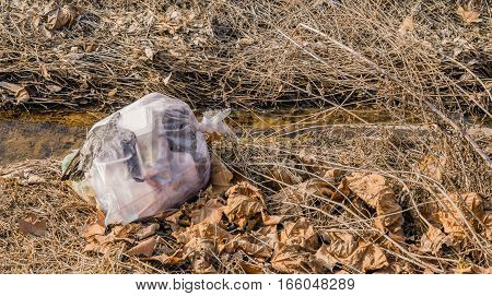 Bag of trash deposed of in the country by the side of a stream