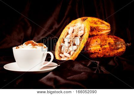 Studio shot of hot chocolate with cocoa pods on black