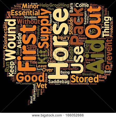 Horse First Aid Pack text background wordcloud concept