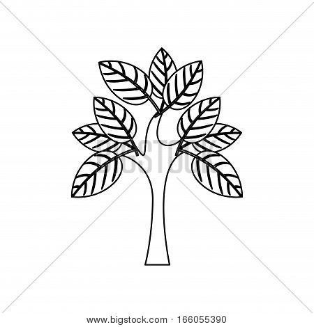 silhouette tree with multiple leafy branches vector illustration