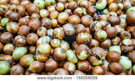 Group Of Dried Organic Onions In A Marketplace