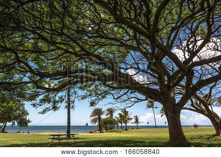 Haleiwa Park in North Shore Oahu Hawaii