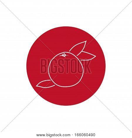 Grapefruit, Colorful Round Icon Pomelo, Fruit Icon