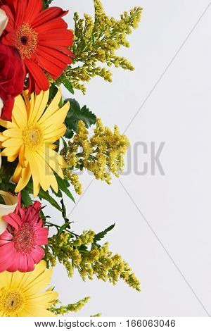 Colourful flower boarder around white empty space