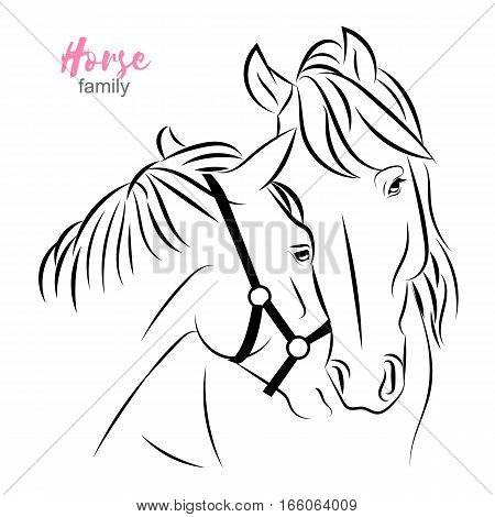 Vector horses closeup sketch. two horses express care and love to each other. Mother and foal thin line illustration. Poster, banner advertisement design element