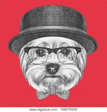 Portrait of Hipster Dog. Yorkshire Terrier with sunglasses,hat and bow tie. Hand drawn illustration.