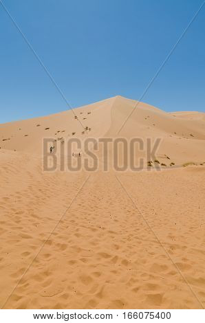 Three tourists attempting the climb of the highest sand dune of Erg Chebbi in the Moroccan desert at Merzouga, Morocco, North Africa.
