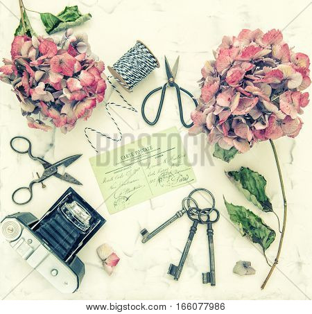 Hortensia flowers vintage scissors and retro photo camera on white marble background. Nostalgic flat lay. Retro style toned picture