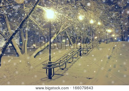 Night landscape in winter park. Light lights and falling snow. Beautiful background with night illumination.