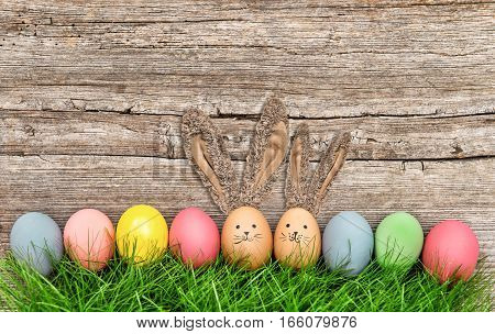 Funny easter eggs bunnies with big ears. Cute holidays decoration
