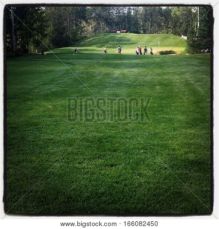 Golfers on golf course on sunny day with lush green grass and trees along fairway.  Instagram effects