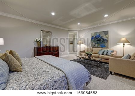 Gray Tones Bedroom Interior With Queen Bed