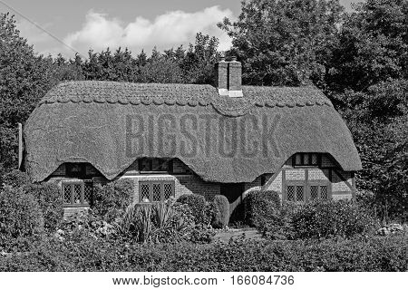 Lovely black and white picture postcard quintessentially English thatched cottage in the New Forest in the UK on a sunny day. Picture taken from a public place.