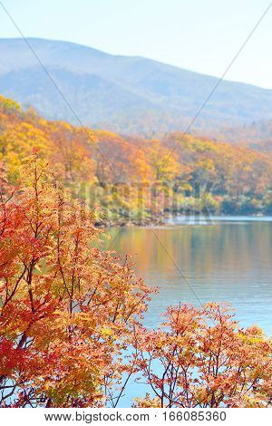 Autumn colors and a lake at Mt Kurikoma in Akita and Iwate Japan