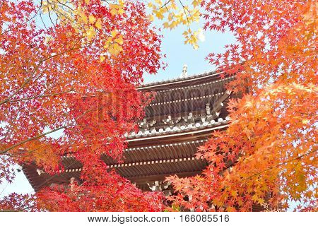 Pagoda seen through maple leaves at Shinnyodo temple in Kyoto Japan