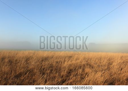 English winter landscape with mist covered fields and dry golden grasses on the scenic Yorkshire wolds