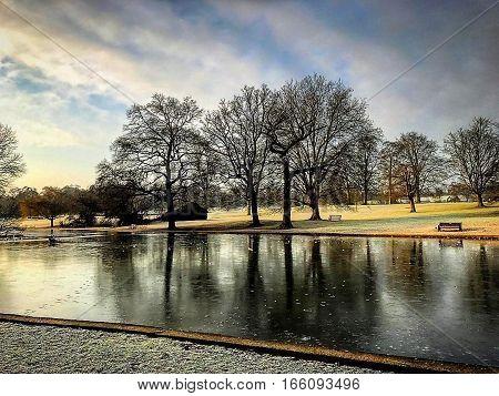 St Albans Verulamium Park winter lake scene