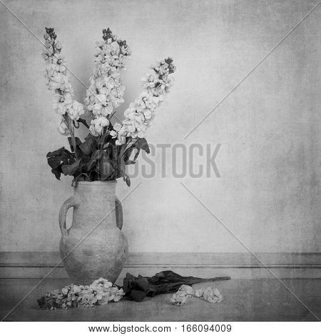 Black and white image of cream white stock flowers in a cream vase in a vintage style. Space for text.