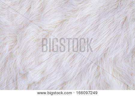 White Faux Animal Fur Texture Background Closeup