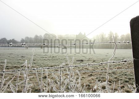 Hoarfrost on barbed wire on a midwinter morning