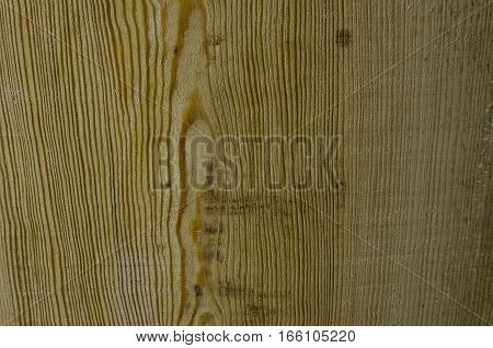 Focused texture of some piece of wood