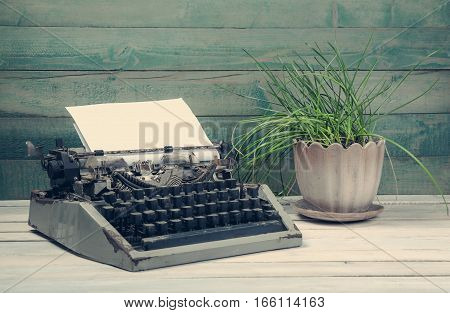 Dirty vintage tapewrite with plant on the wooden table