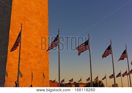 American flags stand in US capital at sunset. Sunset in Washington DC and National Monument with national flags.