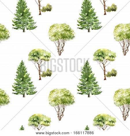 seamless pattern with trees drawing by watercolor, firs, pines and bushes at white background, natural ornament, hand drawn illustration