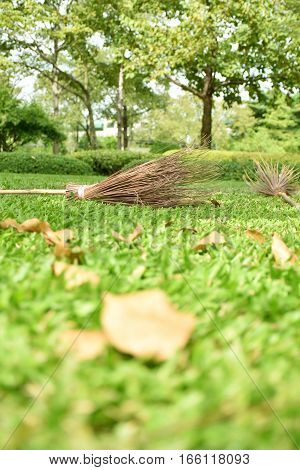 Broom and leaves many. In a garden of thailand