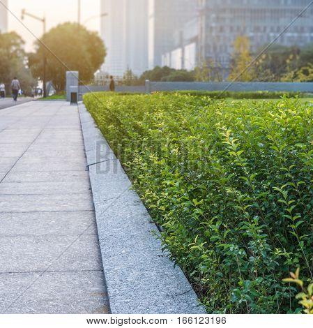 concrete sidewalk with modern building on background,Shenzhen,China.