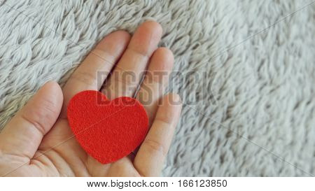 Red heart on blurred of woman's hand and fur background