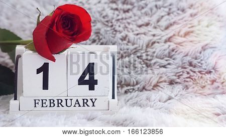 February 14 on wooden cube calendar red rose on blur fur background