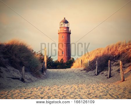 Historical Lighthouse. Shinning Lighthouse,  Dunes And Pine Tree. Tower Illuminated